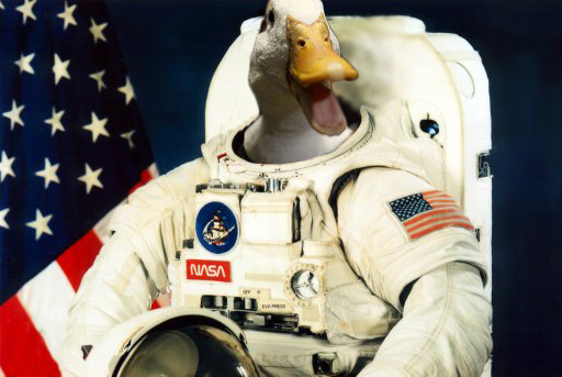 nathan walker astronaut - photo #19
