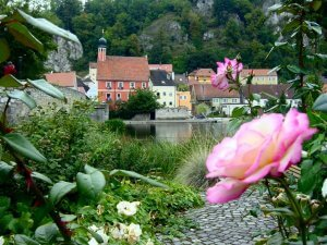 Kallmunz – roses and river