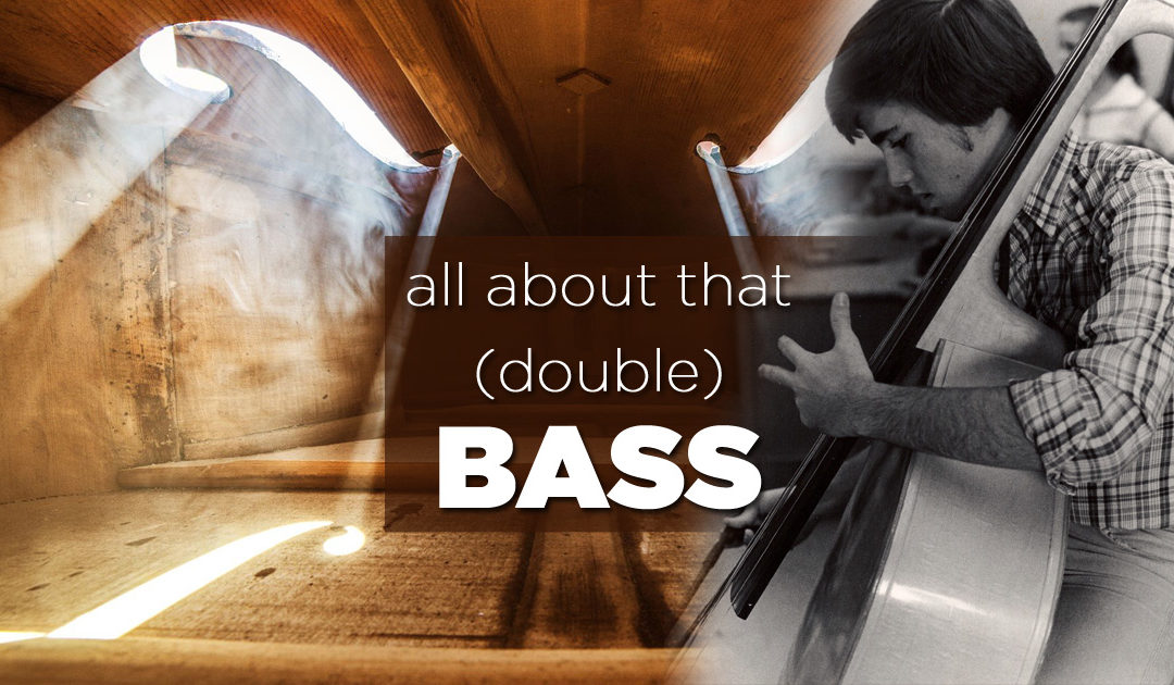 All about that (Double) Bass