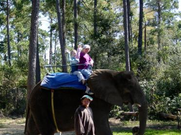 mel-and-lauren-on-elephant