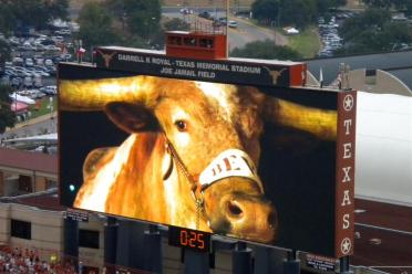 Bevo is The Man