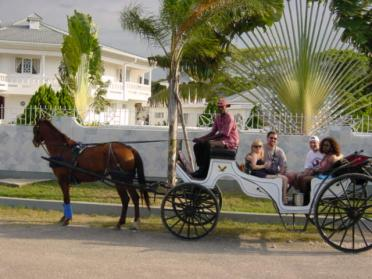 Horse & buggy ride (2)